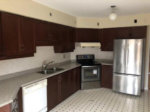 Solid Wood Kitchen Cabinets for SALE.