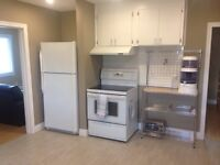 Renovated large 2 Bedroom 1200$ + hydro