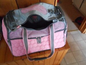 Cute, compact air-line approved, Argo Pentagon Pet carrier