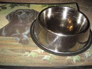 Dog Dishes