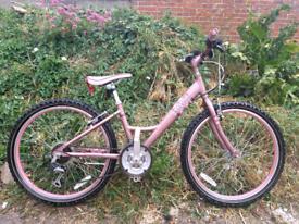 Raleigh aluminium frame bike