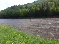 11.7 acres with 730 feet of water frontage!