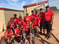 looking for softball teams