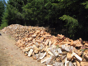Premium Firewood For Sale! 75 per Cord. The Firewood Guys.