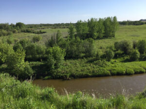 Recreational / Farm for Sale - 1/2 Section (309.37 Acres)