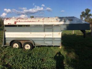 14ft Horse/Livestock trailer