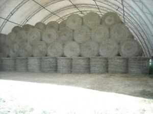Quality round bales of hay for horses (foin pour chevaux)