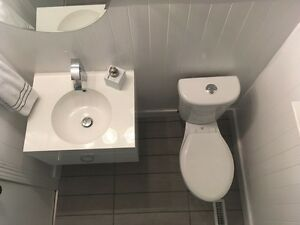 Professional plumber at an affordable price! London Ontario image 3