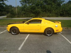 2005 Ford Mustang 4.0L Coupe for Sale by Owner (Reduced)