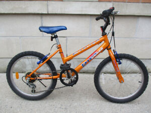 Super Raleigh 5 Speed - Fast And Rugged - For Smaller Riders