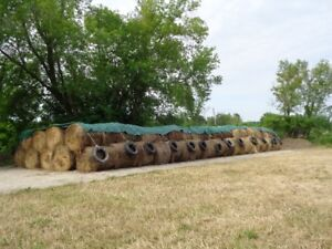BALES of HAY for sale