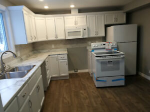 Newly renovated 2 Bedroom 2-Storey Condo in Grand Falls-Windsor.