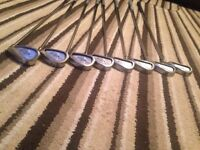 Callaway steelhead x14's Steel Shafts
