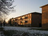 Large & Bright 2 Bedroom Apartment
