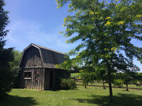 Small, private barn for rent near Strathroy. $250/month