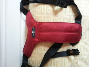 Dog safety harness - Sleepypod Clickit Sport Oakville / Halton Region Toronto (GTA) image 1