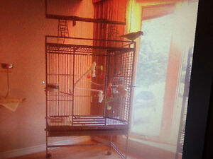 Large Play-Top Parrot/Bird Cage