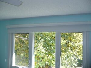 Hunter Douglas-Room Darkening roller shade