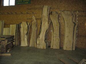 WOOD SLABS LIVE EDGE Kitchener / Waterloo Kitchener Area image 8