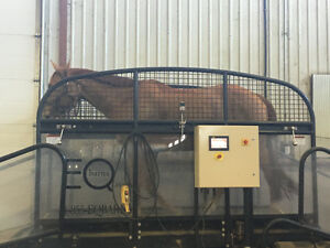 Horse Treadmill Kijiji Free Classifieds In Alberta