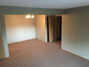 Newly renovated 2 bedroom close to everything