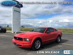 2005 Ford Mustang   Low KMS!
