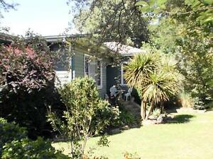 TENTERFIELD NSW: HOME ON LEVEL 1/2 ACRE IN TOWN - SUBDIVIDE (SCA) Tenterfield Tenterfield Area Preview