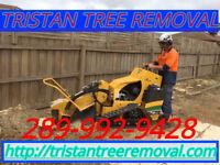 Tree Removal Service Free Estimate. 289-992-9428. GTA