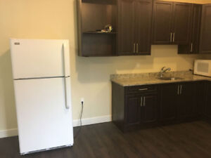 Bachelor pad for rent near bcit