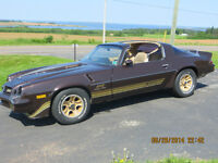 1981 Limited Edition Camaro Z28