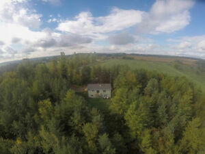 Energy Efficient Bungalow nestled in its own 6.5 acre forest
