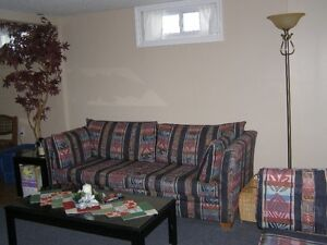 GREAT STUDENT RENTAL OR YOUNG PROFESSIONALS London Ontario image 6