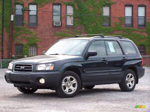 Searching For a Subaru Forester