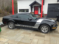 2005 Ford Mustang stang Coupe (2 door)