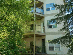 2 Bed 2 Bath Apartment close to U of A and Whyte Ave