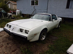 1980 Trans-Am, Trade for dual purpose