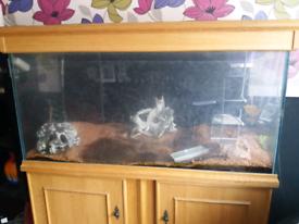Fish tank and sump