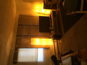 Spacious 1 bedroom apartment available for rent from June