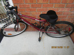 Bicycle all terrain