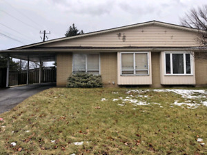 Bachelor Basement in House in Stoney Creek Hamilton for Rent