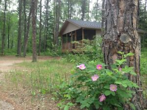 PRICE REDUCED!  Beautiful year round home or cabin in Belair.
