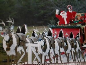Beautifully crafted Christmas Santa sleigh and reindeer float