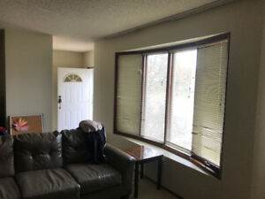 70 hickory wood for rent (transcona area)