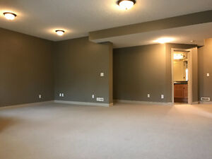 Bright and beautiful walkout basement for rent