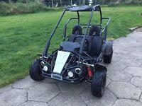 Hammerhead buggy (4x4 van mudhead quad tractor no swap
