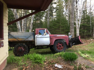 Looking for headlights for 1964 Ford 3 ton truck