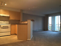 ONE MONTH FREE RENT!  Clean & bright Airdrie condo. Cat friendly