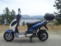 Nice TAO 502 Electric Scooter