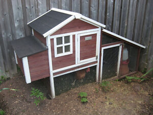 Chicken Coop and 3 brown hens!