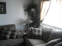 2 bedroom fully furnished house.